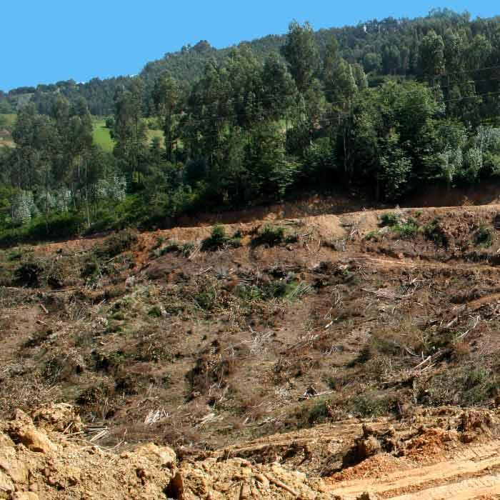 vertedero residuos construcción asturias